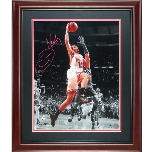 Joakim Noah Autographed Chicago Bulls (Spotlight Dunk vs Celtics) Deluxe Framed 16x20 Photo