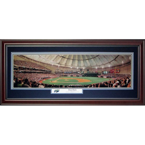 Tampa Bay Rays (First Pitch – Tropicana Field) Deluxe Framed Panoramic Photo