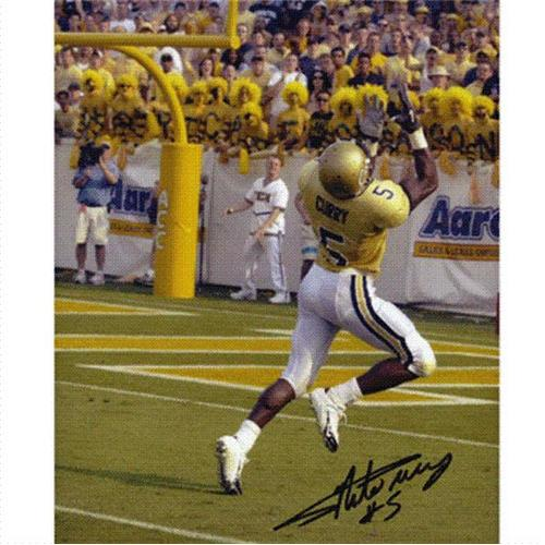 Nate Curry Autographed Georgia Tech Yellow Jackets 8x10 Photo