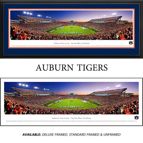 Auburn University Tigers (End Zone) Framed Stadium Panoramic